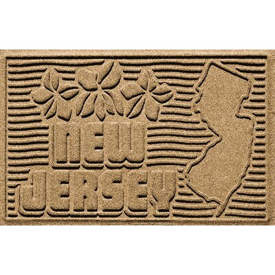 Aqua Shield New Jersey Doormat Color: Gold