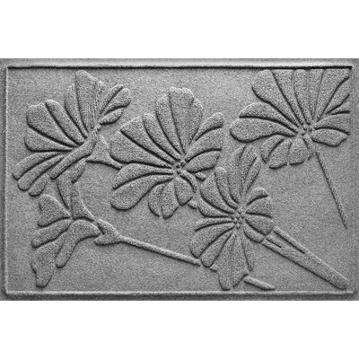 Aqua Shield Spring Flowers Doormat Color: Medium Gray