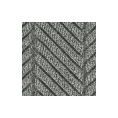 Waterhog Eco Elite Doormat Mat Size: 4 x 6, Color: Grey Ash