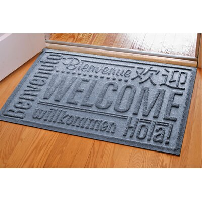 Aqua Shield World Wide Doormat Color: Bluestone, Mat Size: Rectangle 2 x 3