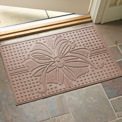Wrap It Up Outdoor Doormat Color: Medium Brown