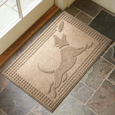 Amald Flying Dog Doormat Color: Camel