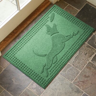 Amald Flying Dog Doormat Color: Light Green