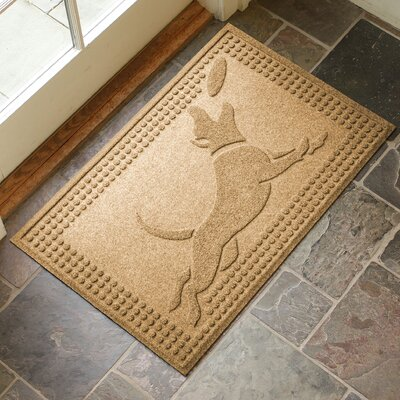 Amald Flying Dog Doormat Color: Gold