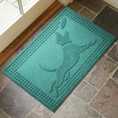 Amald Flying Dog Doormat Color: Aquamarine