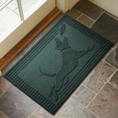 Amald Flying Dog Doormat Color: Evergreen