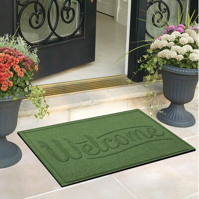 Amald Simple Welcome Doormat Color: Light Green