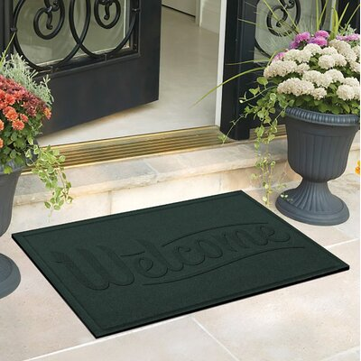 Amald Simple Welcome Doormat Color: Evergreen