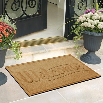 Amald Simple Welcome Doormat Color: Gold