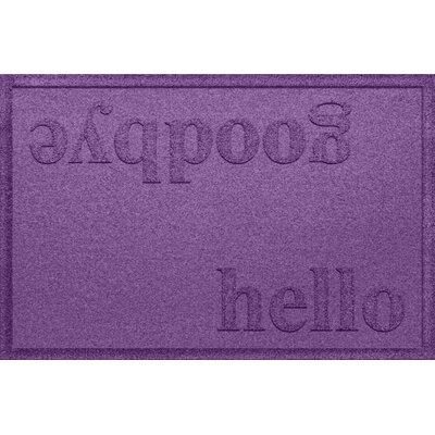 Ashland Hello/Goodbye Doormat Color: Purple