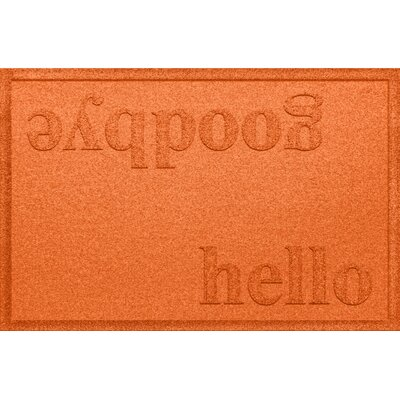 Ashland Hello/Goodbye Doormat Color: Orange