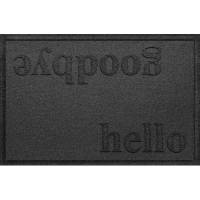 Ashland Hello/Goodbye Doormat Color: Charcoal