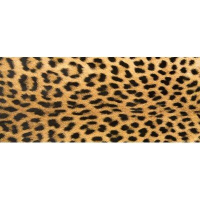 Fo Flor Leopard Doormat Rug Size: 25 x 60