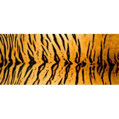 Fo Flor Tiger Doormat Rug Size: 46 x 66
