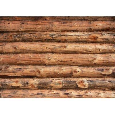 Fo Flor Log Jammer Doormat Mat Size: 46 x 66