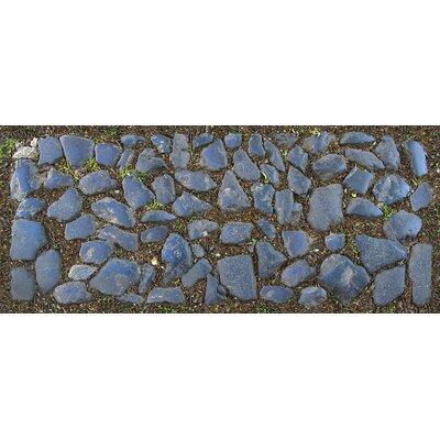 Fo Flor Stones Doormat Rug Size: 25 x 60