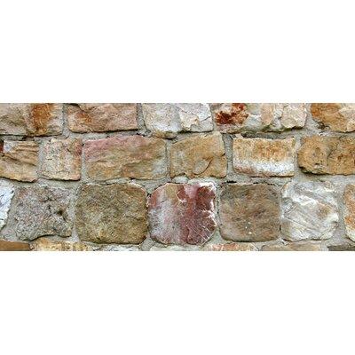 Fo Flor Rockwall Doormat Rug Size: 25 x 60