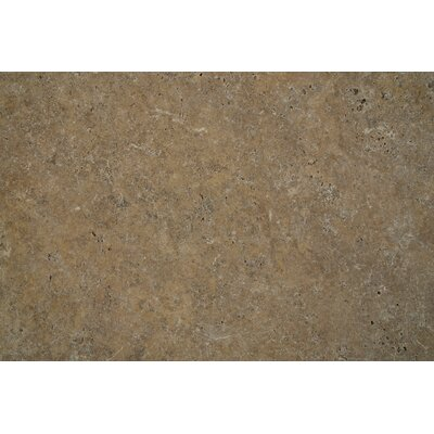 Tuscany Scabas Travertine Tumbled Paver (Set of 4)