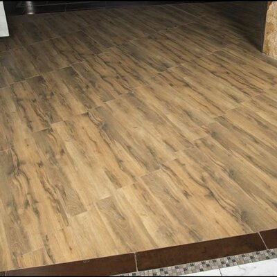 Botanica Cashew 6 x 24 Porcelain Wood Tile in Glazed Textured