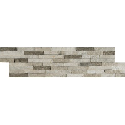 Colorado Canyon Pencil Ledger Panel 6 x 24 Stone Split Face Tile in Natural (Set of 3)