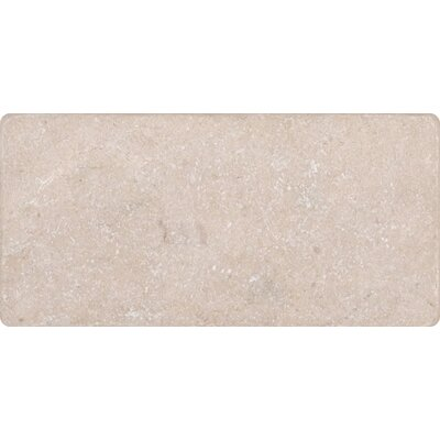 3 x 6 Marble Tile in Cream Marfil