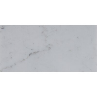 3 x 6 Polished Marble Tile in Carrara White