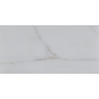 3 x 6 Polished Marble Tile in Calacatta Gold