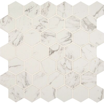Carrara 2 x 2 Hexagon Porcelain Mosaic Tile in Matte