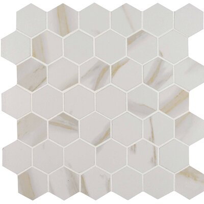Calcatta 2 x 2 Hexagon Porcelain Mosaic Tile in White