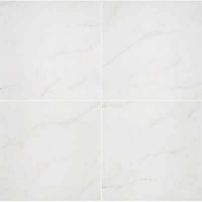 Aria 24 x 24 Porcelain Tile in Ice