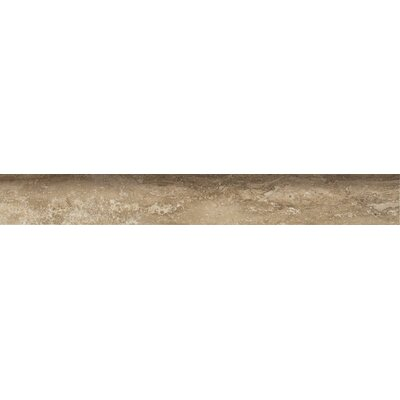 Veneto 24 x 3 Bullnose Tile Trim in Noce