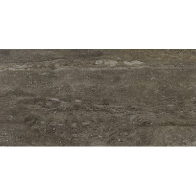Veneto 16 x 32 Porcelain Field Tile in Noce