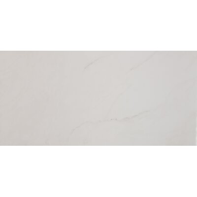 Aria 12 x 24 Porcelain Field Tile in Ice