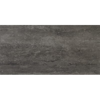 Veneto 12 x 24 Porcelain Field Tile in Gray
