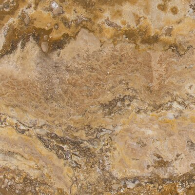 Tuscany Scabas 18 x 18 Travertine Field Tile in Honed Gold