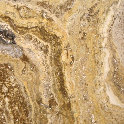Tuscany Scabas Travertine Field Tile in Honed, Unfilled and Chipped Brushed Brown