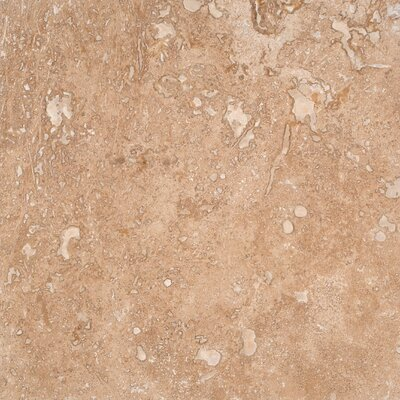Tuscany Walnut 12 x 12 Travertine Field Tile in Honed Brown