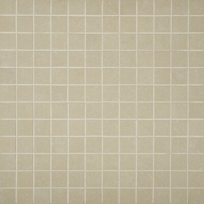 2 x 2 Porcelain Mosaic Tile in Beige