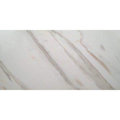 Pietra Calacatta 12 x 24 Porcelain Field Tile in White