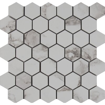 Statuario 2 x 2 Hexagon Porcelain Mosaic Tile in Matte