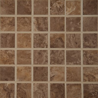 Toscana 2 x 2 Porcelain Mosaic Tile in Canyon