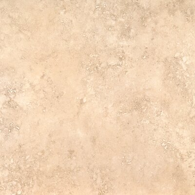 Venice 20 x 20 Porcelain Field Tile in Glazed Cappuccino