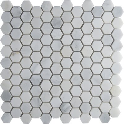 Arabescato Carrara 12 x 12 Hexagon & Dot Tile in Mosaic