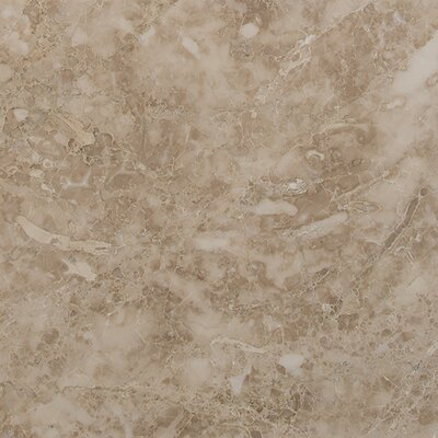 12 x 12 Marble Field Tile in Crema Cappuccino