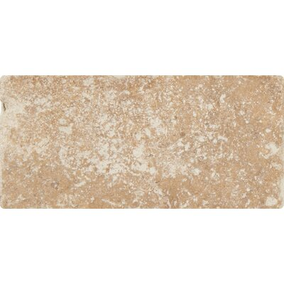 Tuscany Walnut 3 x 6 Travertine Subway Tile in Tumbled Brown
