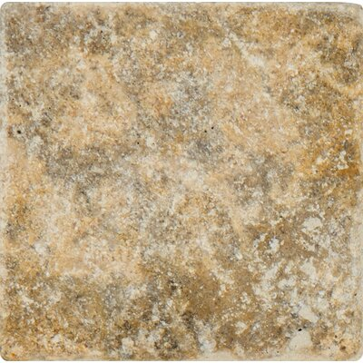 Tuscany Scabas 4 x 4 Travertine Field Tile in Tumbled Yellow