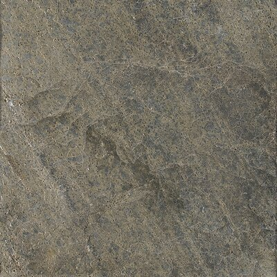 16 x 16 Natural Stone Field Tile in Polished Ostrich Grey