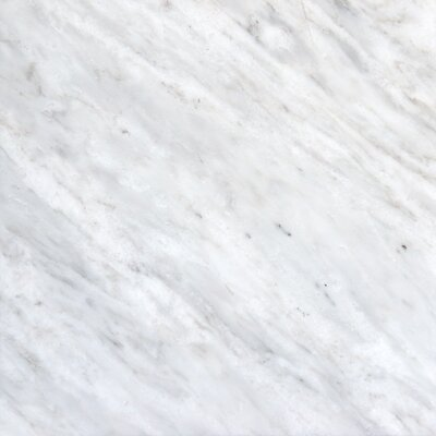 12 x 12 Marble Field Tile in Arabescato Carrara