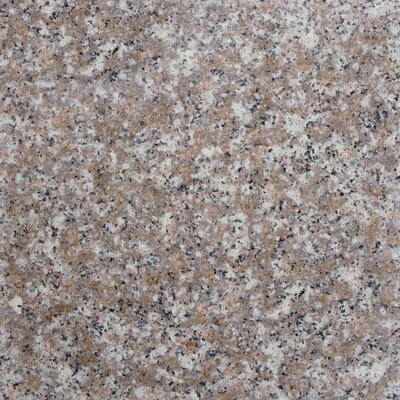 12 x 12 Granite Field Tile in Peach