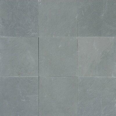 Montauk 12 x 12 Slate Field Tile in Honed Blue